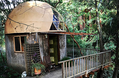 בקתה מאשרום דום Mushroom Dome Cabin אפטוס קליפורניה להשכרה Airbnb הכי מבוקש, באדיבות: Airbnb