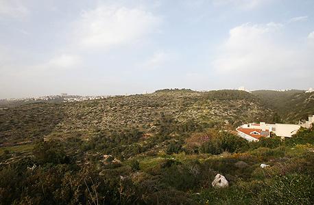 רמת גוראל בחיפה. 524 דונם במחלוקת