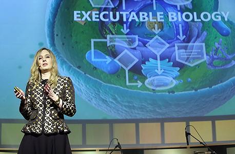 """פישר בתל אביב, בחודש שעבר, מציגה את רעיון ה""""ביולוגיה בהרצת מחשב"""": בדיקה מהירה, זולה ויעילה הרבה יותר מבמעבדה"""