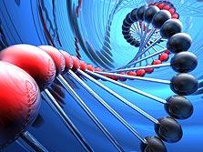 אתה עצור, אנחנו רוצים את ה-DNA שלך, צילום: shutterstock