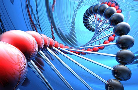 DNA, צילום: shutterstock