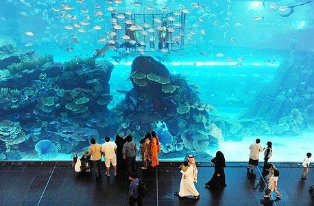 האקווריום בדובאי מול, הקניון הגדול בעולם. 1200 חנויות במתחמים נושאיים