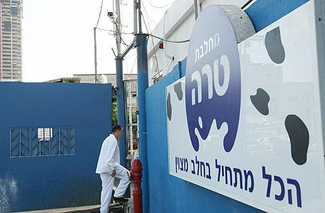 מחלבות טרה בתל אביב, צילום: עמית שעל