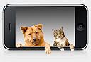 אפליקציות לחיות מחמד, צילום: Shutterstock