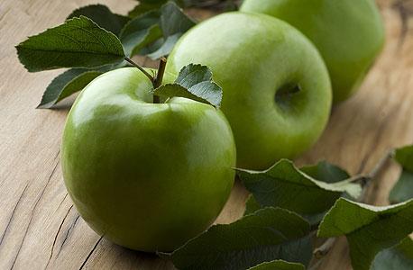 """מול אחד הדוכנים התלונן קונה: """"זה לא פלפלים של 8.90"""". הסכמנו איתו והגבלנו את מספר הפלפלים, רק אחד ליום לשנינו. מבין הפירות קנינו את התפוחים, שהיו הכי זולים (""""רק"""" 6.90 לק""""ג), והקצבנו אחד ליום לכל אחד מאיתנו"""