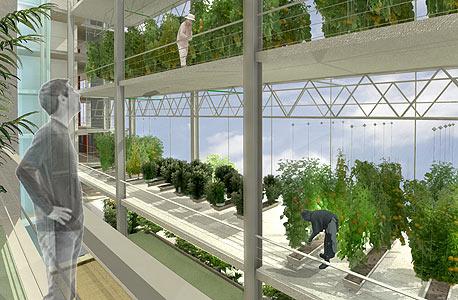 הדמיה של בנייה ירוקה (קרדיט: משרד אדריכלים קנפו כלימור אדריכלים )