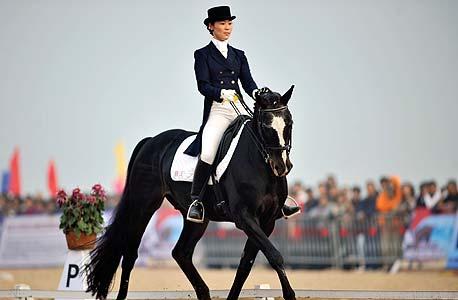 תצוגת סוסים, צילום: אי פי אי