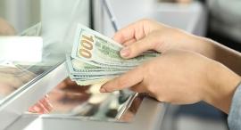כסף דולר דולרים בנקאית, צילום: שאטרסטוק