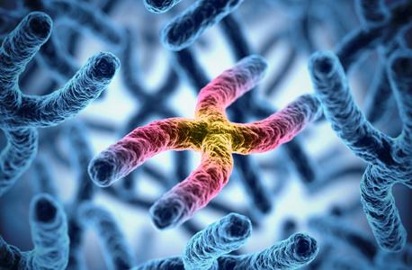השמדה גנטית? רעיון רע