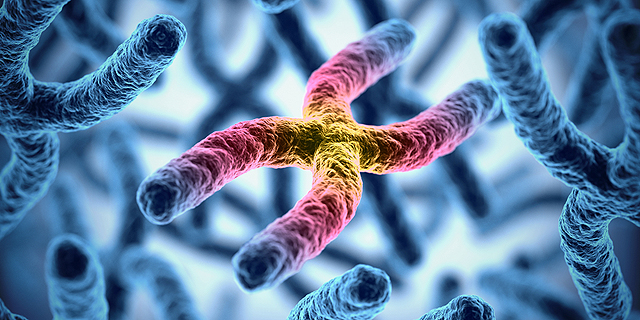 גנטיקה כנשק?, צילום: שאטרסטוק