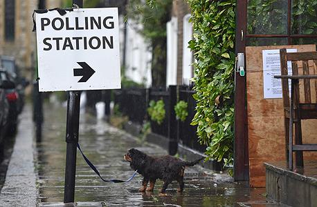 ברקזיט משאל עם בריטניה קלפיות הצבעה 2, צילום: רויטרס