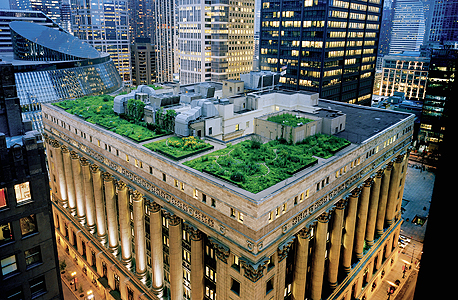 גג ירוק על בניין העירייה בשיקגו. הצמחיה מצמצמת את ההזדקקות לקירור מכני