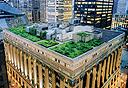 N גג ירוק ב בניין ה עירייה בשיקגו , צילום: Diane Cook & Len Jenshel