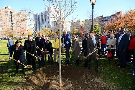 פרויקט מיליון עצים בניו יורק. לשנות את הפרדיגמה התכנונית
