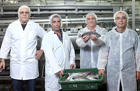 """מימין: ניזרי, גלר, סגל ואיכנולד במפעל. """"כשהשוק יוצף בפילה זול לא תהיה לנו ברירה אלא להוריד את מחירי הדג הטרי, והחשש הוא שיסגרו את המדגים"""", צילום: עמית שעל"""