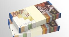 מאה שקל שקלים כסף שטרות, צילום: שאטרסטוק