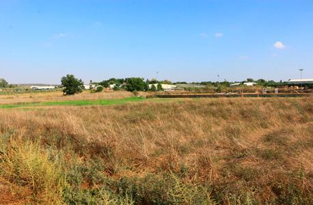 קרקע חקלאית בשרון (ארכיון)