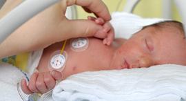 נוטריניה תינוק, צילום: מתוך אתר החברה nutrinia
