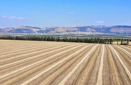 """אדמות של קק""""ל בעמק יזרעאל, צילום: דוברות עמק יזרעאל"""