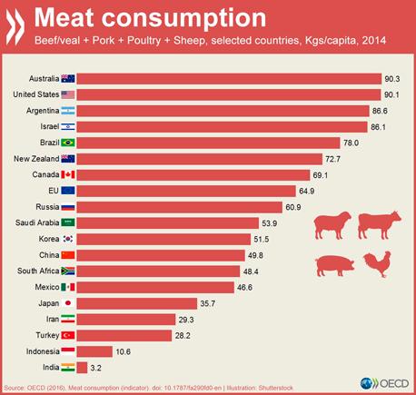 גרף צריכת בשר בעולם, צילום: OECD