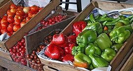 ירקות אורגניים, צילום: צביקה טישלר
