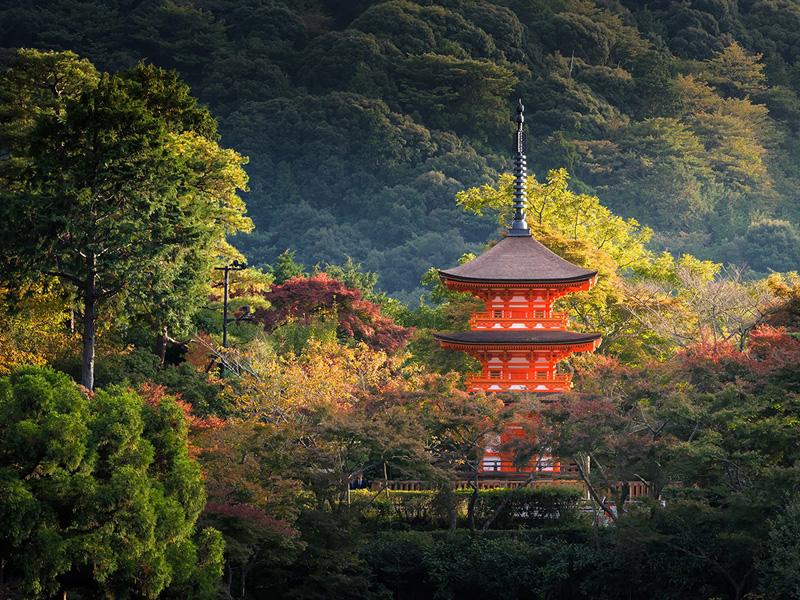 2. קיוטו, יפן: ביקור בקיוטו הוא כמו נסיעה אחורה בזמן. במקום אפשר לבקר במקדשים מהמאה ה-10 ולחלוף על פני גיישות צעירות ברחוב. בעיר יש בסביבות 1,600 מקדשים בודהיסטים וקרוב למאה מסעדות עם כוכבי מישלן