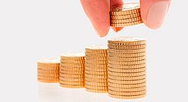 פנסיה מטבעות , צילום: שאטרסטוק