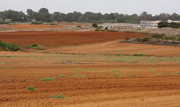 שטחים חקלאים ליד כפר יונה, צילום: נמרוד גליקמן
