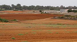 שטח חקלאי, צילום: נמרוד גליקמן