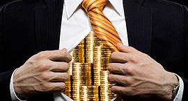 עושר עשירים עשיר מיליונר כסף, צילום: שאטרסטוק