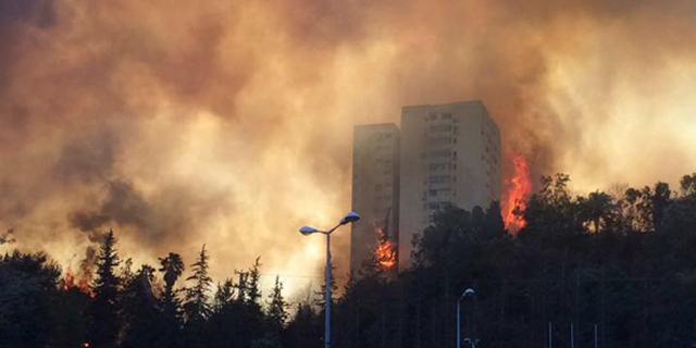 המבקר: סחבת והימנעות מתיקון ליקויים יסכנו חיי אדם בגל השריפות הבא