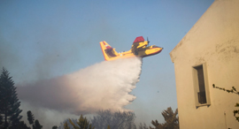 שריפה שריפות חיפה מטוס כיבוי 5, צילום: גיל נחושתן