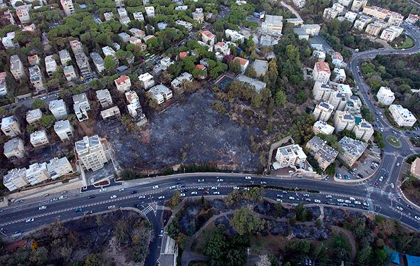 כך נראים השכונות בחיפה אחרי השריפות, צילום: עמי אהרונוביץ