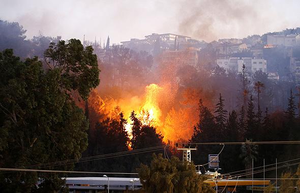 שריפה בחיפה (ארכיון), צילום: איי אף פי