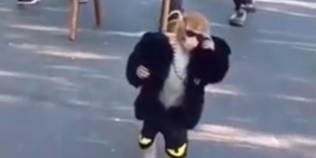 עדיין הקוף מהשכונה