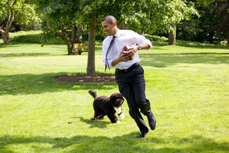 יולי 2010. הנשיא משתעשע עם בו במדשאת הבית הלבן