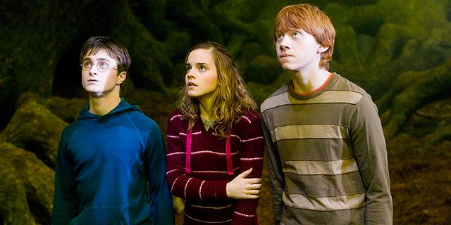 אחרי הספרים והקולנוע - האם הארי פוטר יקבל סדרת טלוויזיה?