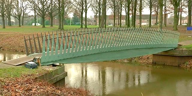 גשר מחומרים ביולוגיים בהולנד, צילום : רויטרס