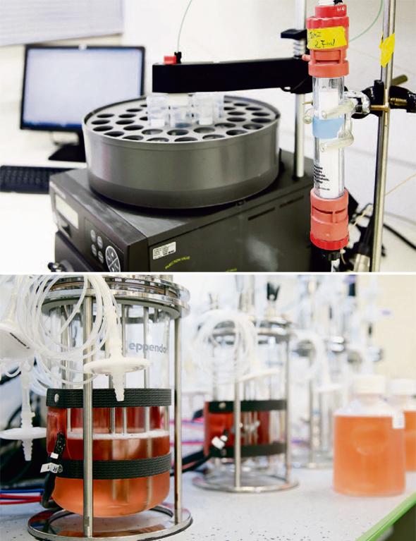 """המעבדה של ואלין ביבנה. """"כל חלבון שנתבקש — נדע לייצר. זה ייקח שנתיים, שלוש, אבל זה מה שאנחנו יודעים לעשות"""""""