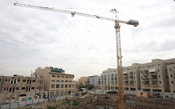 Crane (illustration). Photo: Amit Magal