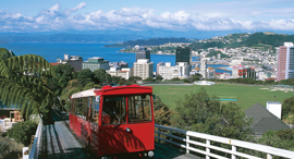 וולינגטון ניו זילנד, צילום: גטי אימג'ס