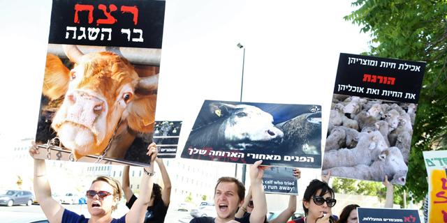 17% ממשלוחי הצאן והבקר החי לישראל נעצרו
