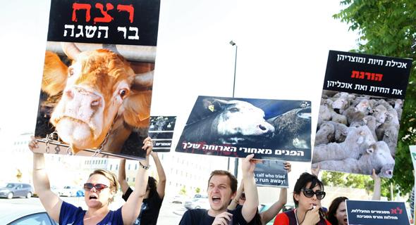 הפגנה נגד יבוא משלוחים חיים של בשר, צילום: עמית שאבי