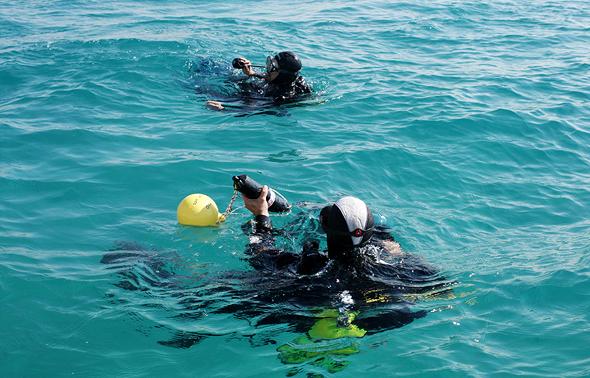 צוללנים בשירות המרכז לחקר הים התיכון באוניברסיטת חיפה