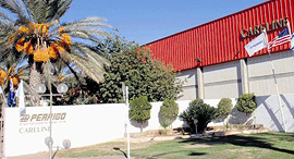 מפעל פריגו ב ירוחם, צילום: חיים הורנשטיין