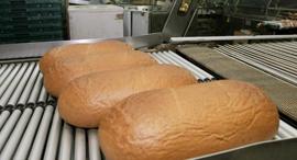לחם אחיד, צילום: שאול גולן