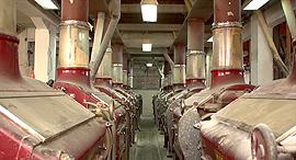 מפעל מזון, צילום: ארכיון