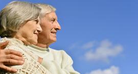 זוג קשישים זקנים זקנה פנסיה, צילום: שאטרסטוק