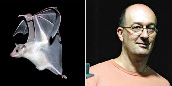 אולנובסקי ועטלף שהוא חוקר. זיהה את האופן שבו המוח מכוון למטרה מדויקת
