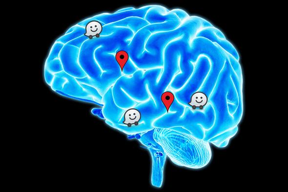 ARM נכנסת למוח. אילוסטרציה